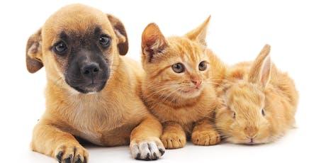 Let's Talk About - Hills Pet Buddies tickets
