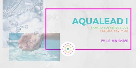Iniciación al Aqualead: Sanación a todos los seres vivos entradas