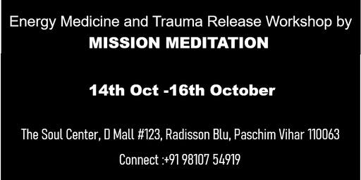 Energy Medicine and Trauma Release Workshop
