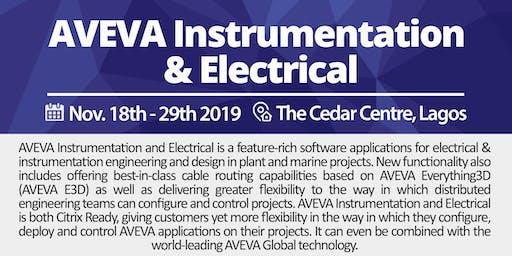 AVEVA Instrumentation Engineer
