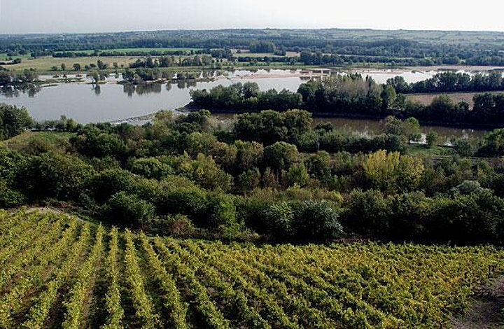 Image pour Assises Interrégionales de l'OEnotourisme en Val de Loire