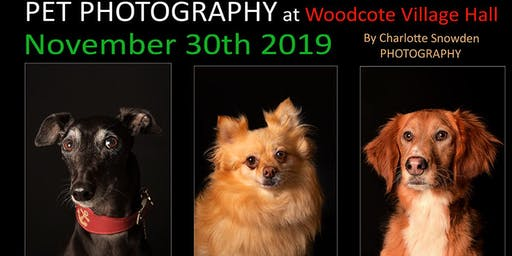 Pet Photography - Woodcote Village Hall