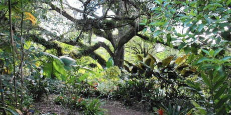 Landscape Photography at Leu Gardens tickets