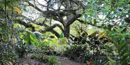 Landscape Photography at Leu Gardens