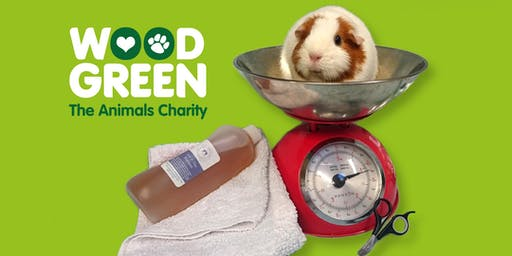 "Rabbit and Guinea Pig Health & Wellbeing ""MOT"" Check - Godmanchester Centre"