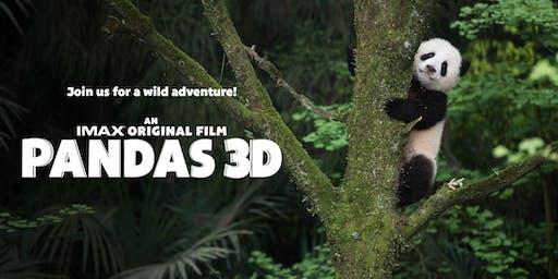 Pandas 3D & Silk Road