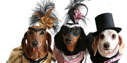 3rd Annual Pet Costumer Contest