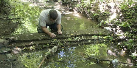 Low Cost Stream Restoration with Stream Inserts, Found Wood and a Buffer tickets