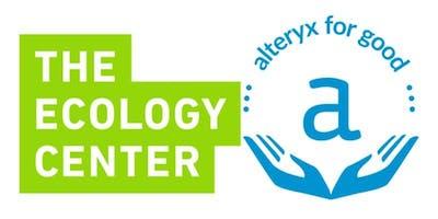 Alteryx For Good Tree Planting Event