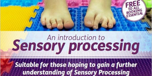 An Introduction to Sensory Processing