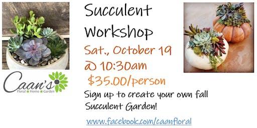 Succulent Garden - Make and Take Workshop
