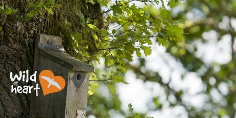 Wild at Heart bird box and feeder workshop - Nature Discovery Centre tickets
