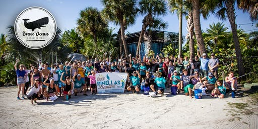 Gandy Beach Cleanup | November 2019