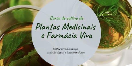 Curso de Cultivo de Plantas Medicinais e Farmácia  ingressos