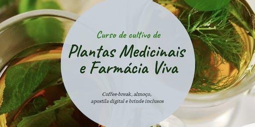 Curso de Cultivo de Plantas Medicinais e Farmácia