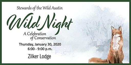 Wild Night 2020