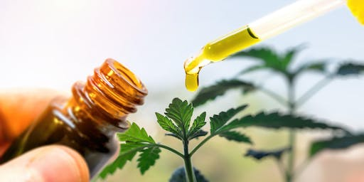 CBD Hemp Oil & How It Heals