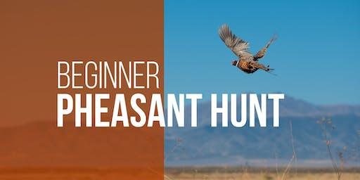 Ogden Bay WMA Beginner Pheasant Hunt