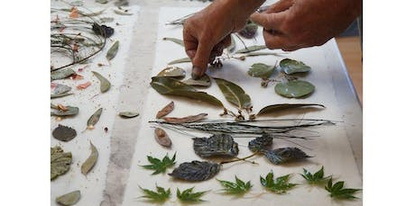 Eco Printing (2019-11-23 starts at 11:00 AM) tickets