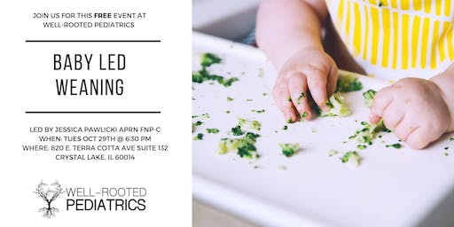 Baby Led Weaning Intro Class