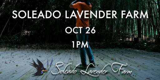 A StreetMeetDC x Soleado Lavender Farm Photo Event