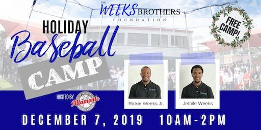 The Weeks Brothers Holiday Baseball Camp 2019