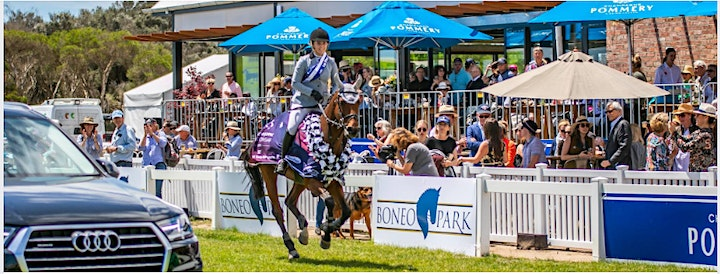 Pommery  VIP Day - 2021 Pryde's Easifeed Australian Jumping Championships image