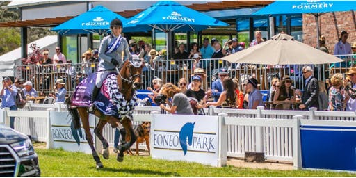 Australian Jumping Championships Pommery  VIP Experience