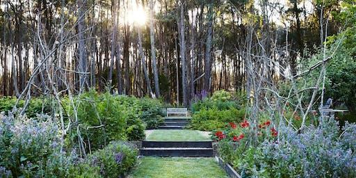Oak & Monkey Puzzle Spring Open Garden Day, Daylesford region, Victoria