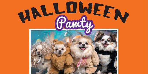 BarkHappy Buffalo: Halloween Pawty Benefiting Buffalo C.A.R.E.S.