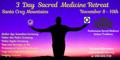 3-Day Sacred Medicine Retreat  (Aya-huambisa, Bufo-huasca, San Pedro)
