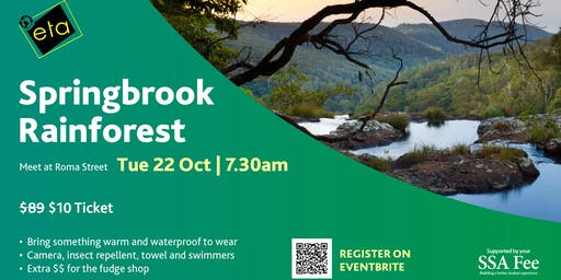 Springbrook National Park Day Tour