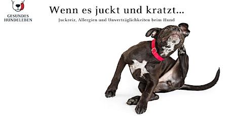 Juckreiz, Allergien und Unverträglichkeiten beim Hund Tickets