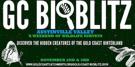 Gold Coast BioBlitz 2019 tickets