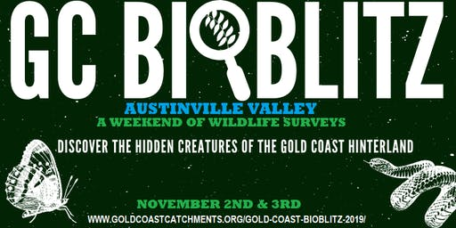 Gold Coast BioBlitz 2019