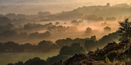 Autumn Photography Experience in the West Pennine Moors tickets