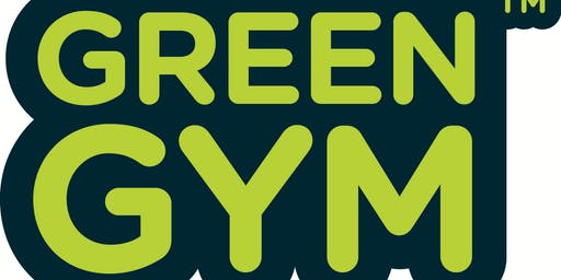 Saturday Green gym in Leyton Jubilee Park