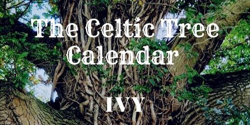 Mini Nature Rangers: Celtic Tree Calendar (Ivy)