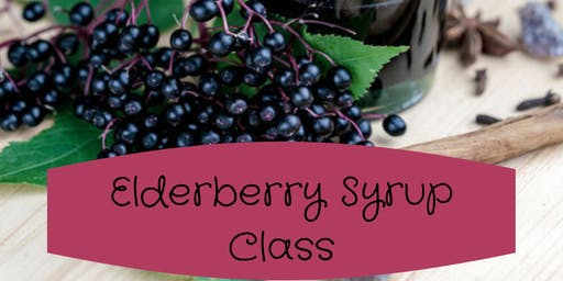 October Elderberry Syrup Class