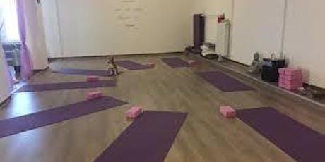 Yoga a Bresso - 5 lezioni a 50 euro biglietti