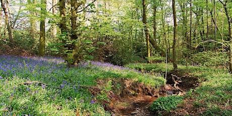 Volunteer Work Day: Moss Valley Woodlands Nature Reserve tickets