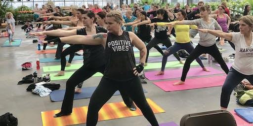 Yoga Feast
