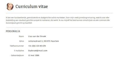 Allez:NL - Maak een CV in het Nederlands met Groep Intro