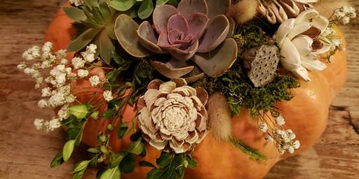 Pumpkin Succulent Diffuser Workshop-Wednesday
