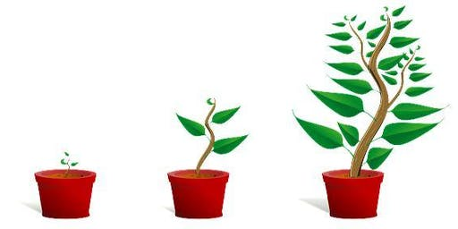 Business Growth and accessing funding to help