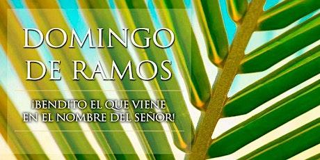 Domingo de Ramos de la Pasión del Señor Domingo 1:00 pm Misa Esp entradas