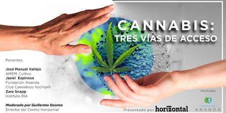 Cannabis: tres vías de acceso  entradas