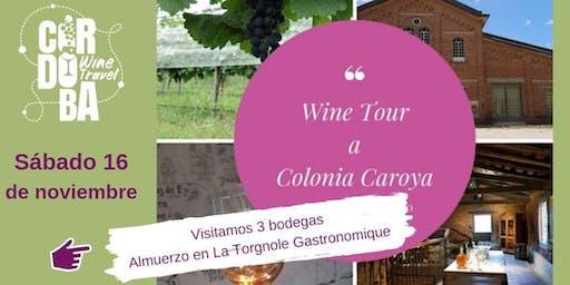 WINE TOUR Colonia Caroya - 16 noviembre