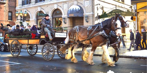 FREE Horse and Carriage Ride with The Shops at Yale