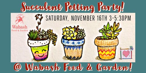 Succulent Potting Party @ Wabash Feed & Garden!